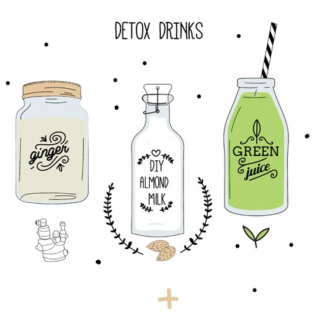 Detox fat flush drinks: ginger water, almond milk, green juice. Decorative doodle style vector illustration. 向量圖像