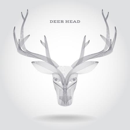 deer skull: Deer Skull Vector Illustration Illustration