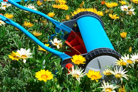 Manual mower in flowers, kind of environment concept Banco de Imagens