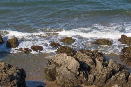 shoreline: Rocky shoreline