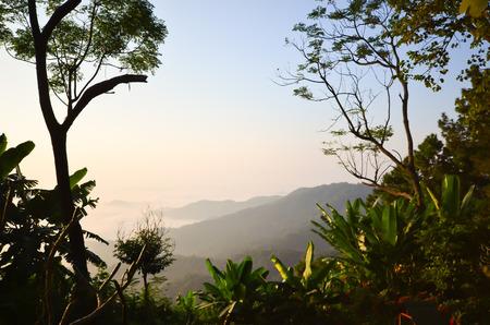 doi: Doi Tung a Chiang Rai