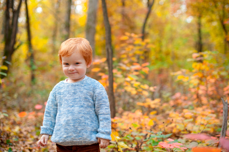 A cunning red-haired boy in the autumn woods
