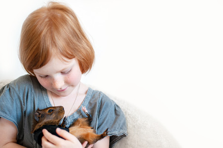 Girl playing with guinea pig with copyspace Stockfoto