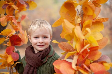 Handsome boy on a swing of autumn leaves Stock Photo