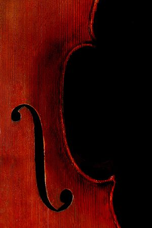 Full Sized Cello on Black photo