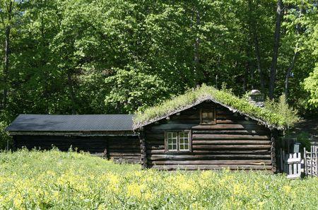 Old Norwegian Cabin photo