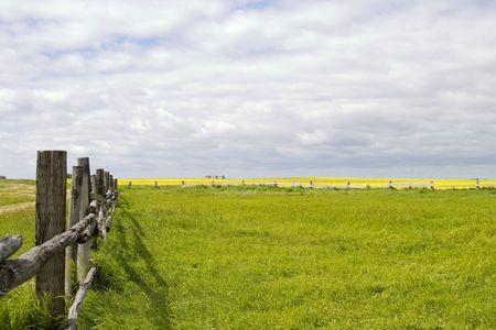 Prairie Landschaft mit alten Zaun Linie.