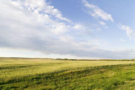 鮮やかな空とプレーリー Lanscape