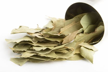 nobilis: Bulk Bay Leaves (Laurus nobilis)