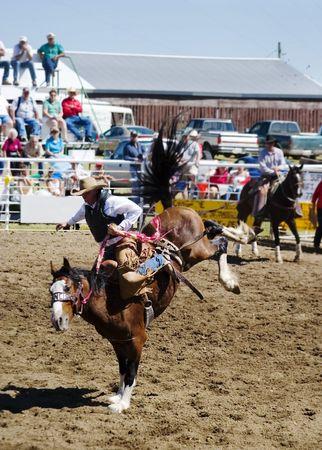 Saddle Bronc riding at the Herbert Rodeo Stock Photo - 310332