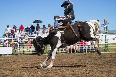 Saddle Bronc riding at the Herbert Rodeo Stock Photo - 310344