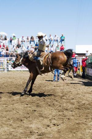 Saddle Bronc riding Stock Photo - 310341
