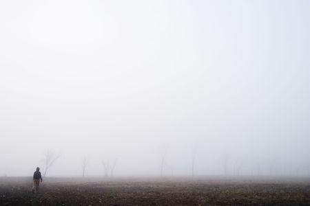 Walking in the fog photo