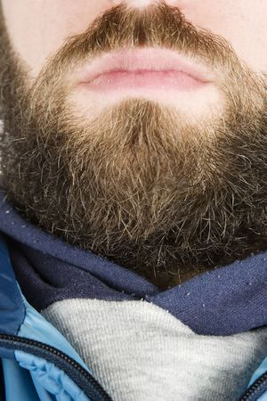 hardy: A young male with a full beard, detail image.