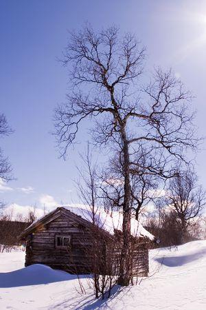 snow break: A winter cabin in winter scene