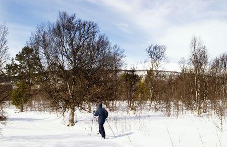 A ski adventure on a snowy landscape photo