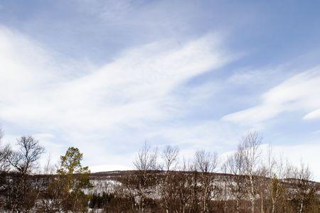 wintery: A wintery mountain landscape
