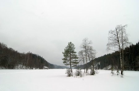 dismal: A lake near Oslo, Norway during the winter on a cloudy dismal depressing day.