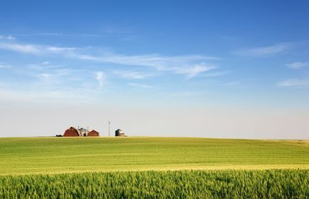 A landscape with wheat and a farm on the horizon Stock Photo - 2348673