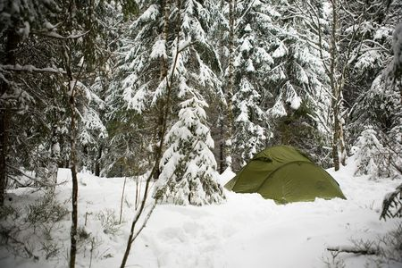 actuary: A tent in the forest during winter