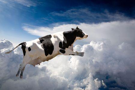vaca: Nubes excesivas de un vuelo estupendo de la vaca