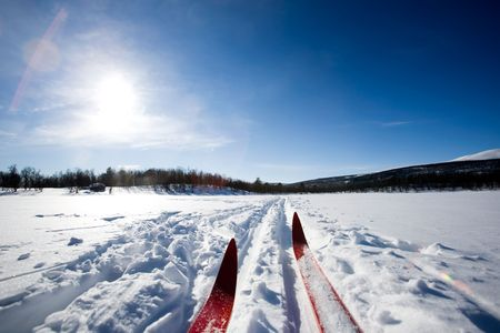 country landscape: A cross country ski detail
