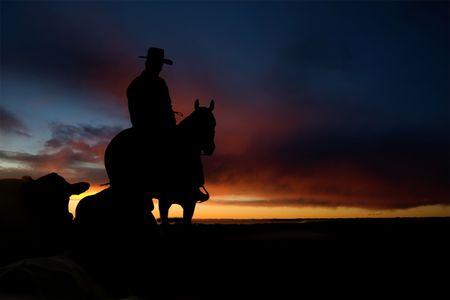ganado: Un vaquero en una colina en contra de una puesta de sol