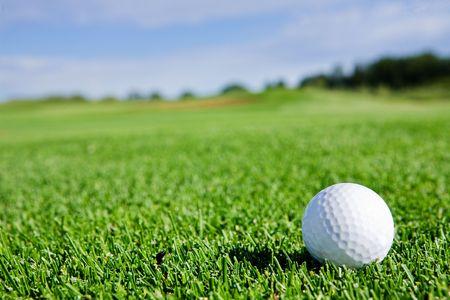 golfcourse: A golf ball sitting on a fairway