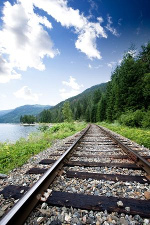 forest railroad: Train tracks near a large lage going through the mountains Stock Photo