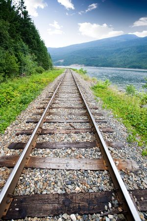 forest railroad: Railroad tracks in nature