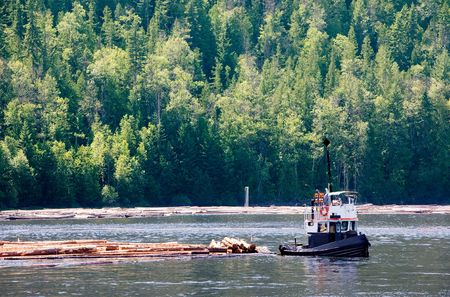 logging: A logging boat on the coast