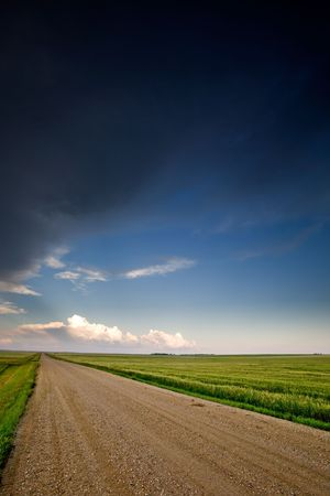 backroad: A road on a prairie landscape
