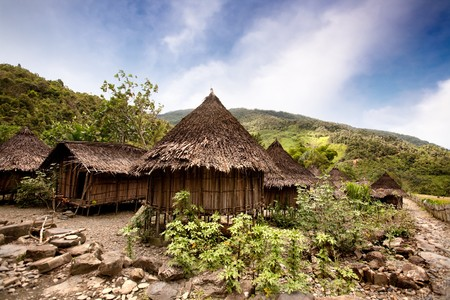 alpine hut: A traditional village in Papua, Indonesia Stock Photo