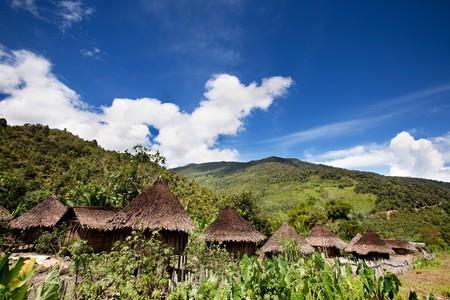 Un village traditionnel en Papouasie, en Indonésie