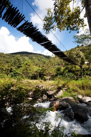 A tropical mountain stream with hanging bridge photo