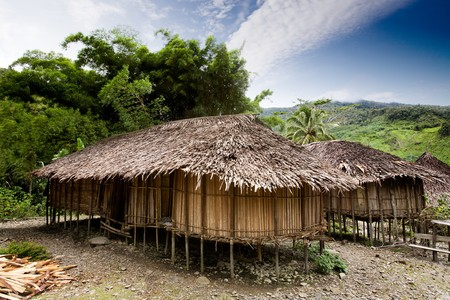 A traditional village hut in Papua, Indonesia Stock Photo - 4198581