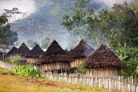 Nuova Guinea: Un tradizionale villaggio di montagna nella provincia di Papua, in Indonesia.