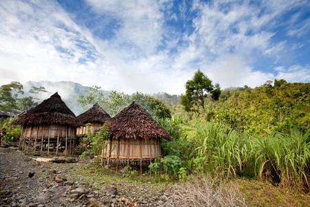 Un village de montagne traditionnel en Papouasie, en Indonésie.