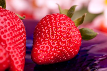 A strawberry on a plate in an outdoor setting photo