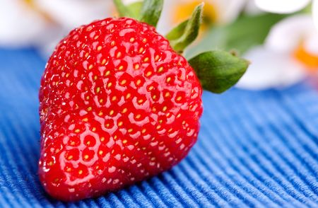 A strawberry on a blue table cloth in an outdoor setting photo
