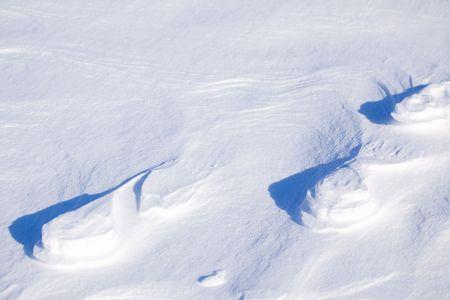 spitsbergen: A polar bear track in the snow