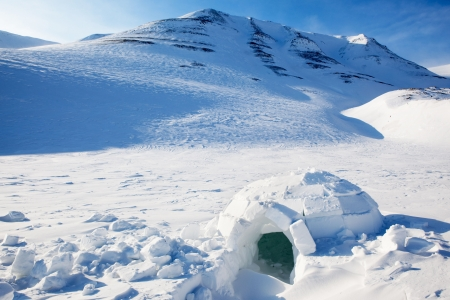 igloo: Igloo in a winter mountain setting