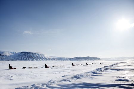 A dog sled expedition across a barren winter landscape Stock Photo - 5702271