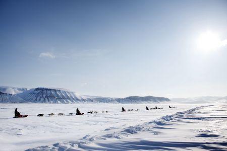 barren: A dog sled expedition across a barren winter landscape