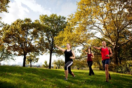 A group of young adults training martial arts in the park Stock Photo - 5802530