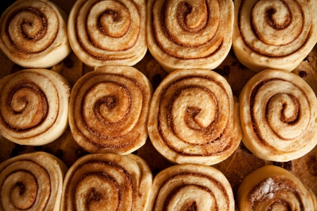 A pan of uncooked cinnamon buns ready for the oven photo