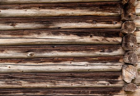 log on: A background texture of a log cabin wall