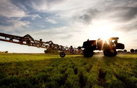pesticides: A silhouette of a high clearance sprayer on a field