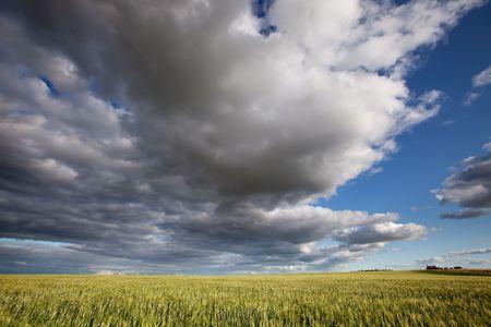 A prairie landscape with a dramatic cloudscape photo