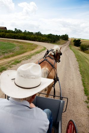 horse drawn carriage: A horse pulling a cart accross a beautiful Saskatchewan landscape
